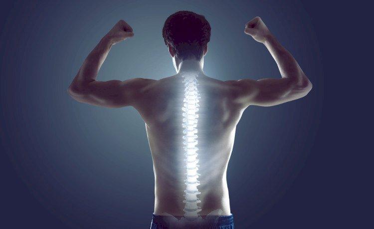 Проф. Сергей Бубновски: Здравето на гръбначния стълб зависи от мускулите