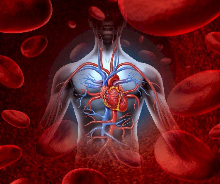 Витаминна бомба: Сок, който незабавно почиства кръвта