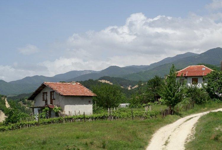 Българи се завръщат от чужбина заради пандемията, търсят селски живот и хармония сред природата