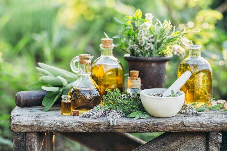 Пет български билки срещу опасни болести