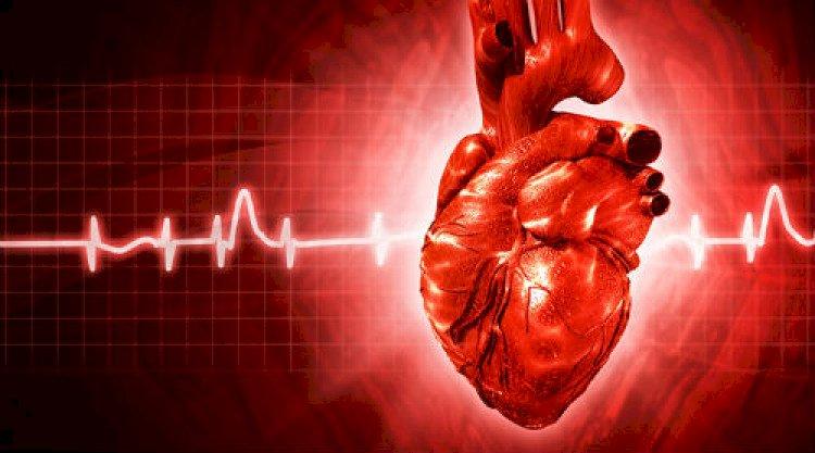 Д-р Анна Карафилоска: Алкохолът и кафето удвояват риска от сърдечна аритмия