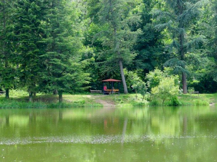 Местност край Стара Загора лекува, пречиства и помага на бездетни семейства (Снимки и ВИДЕО)
