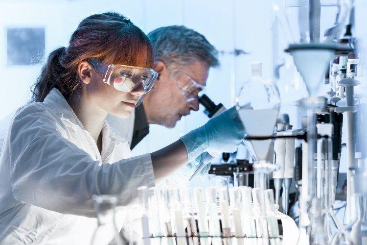 Откриха коя билка, унищожава раковите клетки