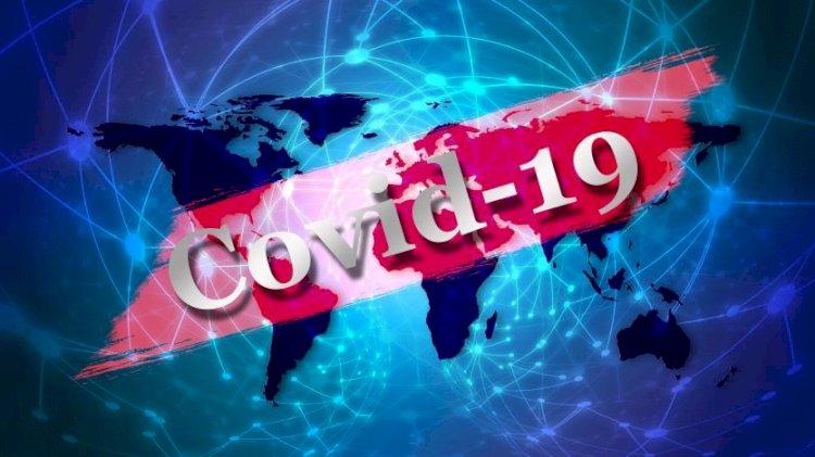 Франция засече щам на К - 19, който не се открива чрез PCR тест