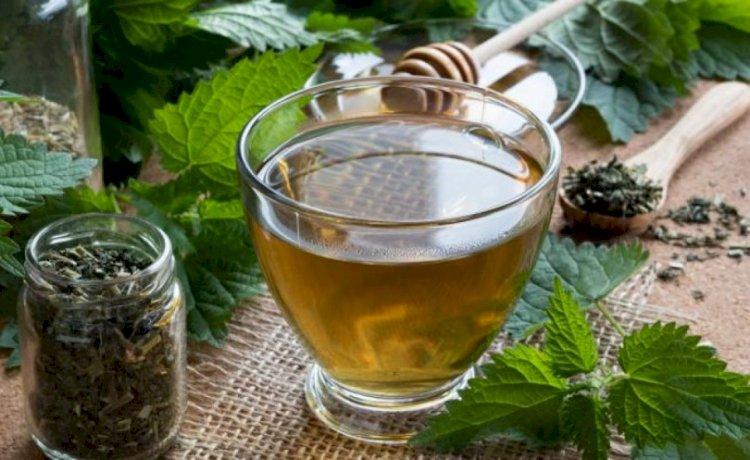 3 чаши чай от коприва за корави кости